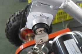 dětská elektrická čtyřkolka Cobra 800W
